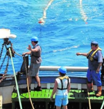 Cómo preservar y aprovechar los recursos marinos