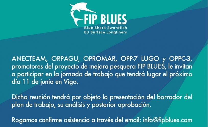 PRESENTACIÓN PLAN DE ACCIÓN DE FIP BLUES