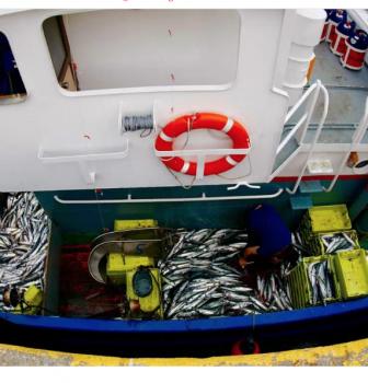 El gobierno permitirá cesiones y ventas de cuotas entre buques de distintos censos y caladeros