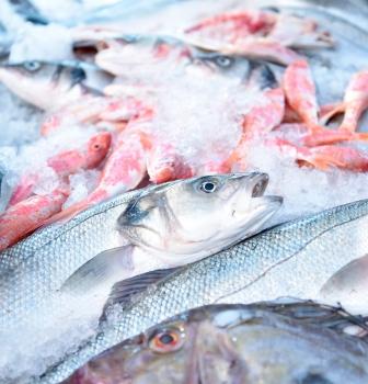 La UE debate los problemas por la prohibición de los descartes de pesca