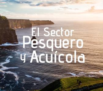 El Sector Pesquero y Acuícola, nuevo vídeo de FEDEPESCA